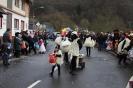 Karnevalszumzug Ahrbrück_19
