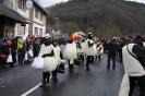 Karnevalszumzug Ahrbrück_20