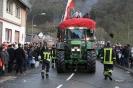Karnevalszumzug Ahrbrück_73