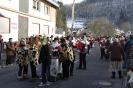 2013 Karnevalszumzug Ahrbrück_4